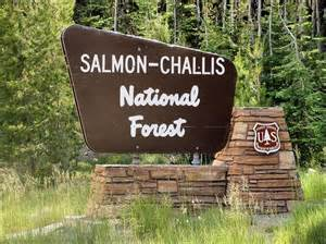 Salmon-Challis National Forest   Travel - National Parks ...