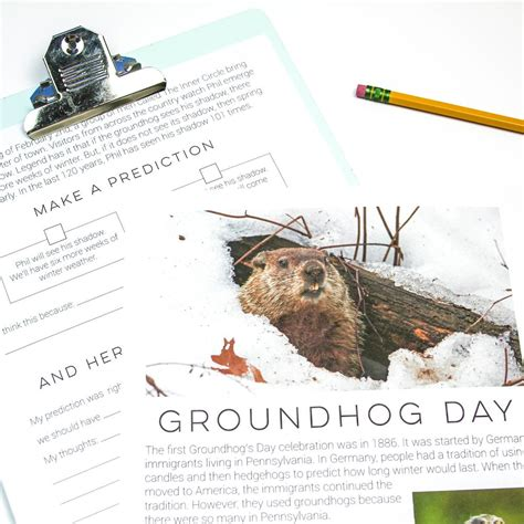 groundhog day meaning dictionary resources everything just so