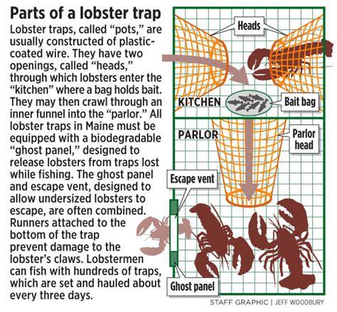 lobster trap diagram casco bay lobster traps newhairstylesformen2014