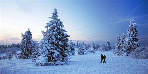 weihnachtsbaum im schnee 28 images schnee