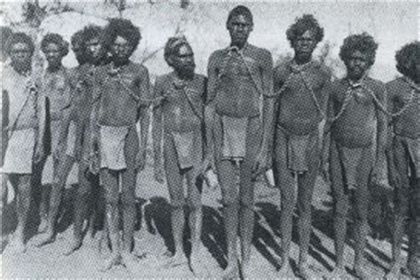 getting started aboriginal australians family history andrew bolt s blog old dog thoughts andrew bolt s blog