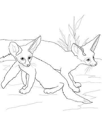 fennec fox babies coloring page free printable coloring
