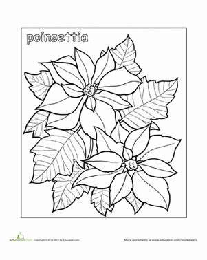 poinsettia leaves coloring pages poinsettia worksheet education com