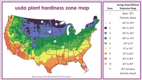 What Gardening Zone Am I In - oy8410eceh hardiness zone map