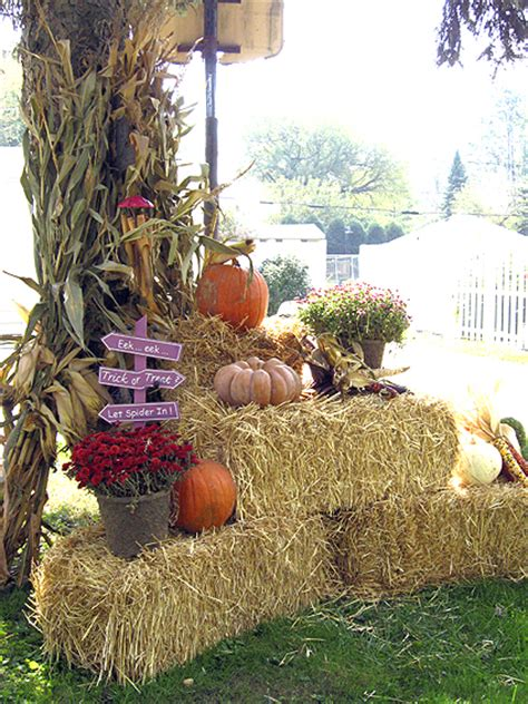 Where To Buy Hay Bales For Decoration by Pumpkins Goodness At The Trabbic Family Farm Pier