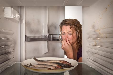 fishy smell in bathroom easy ways to remove refrigerator odors
