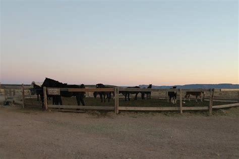 Hualapai Ranch And Cabins by Coral At Picture Of Hualapai Ranch