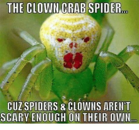 Best 25 Spider Meme Ideas - 25 best memes about spider clown spider clown memes