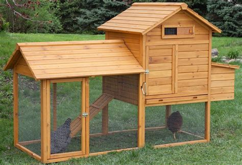 Backyard Chicken Coops Review The Tavern Backyard Chicken Coop Reviews Outdoor Furniture Design And Ideas