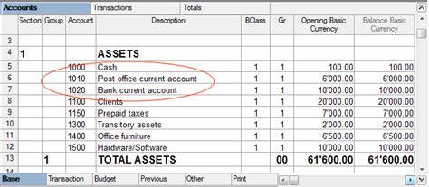 exle of liquid assets subgroups banana accounting 7