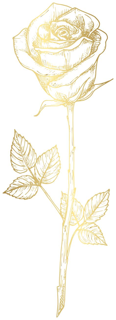 golden rose clipart image gallery yopriceville high