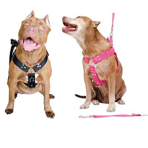 alimento para pitbull peitoral cachorro guia e adaptador serve pit bull