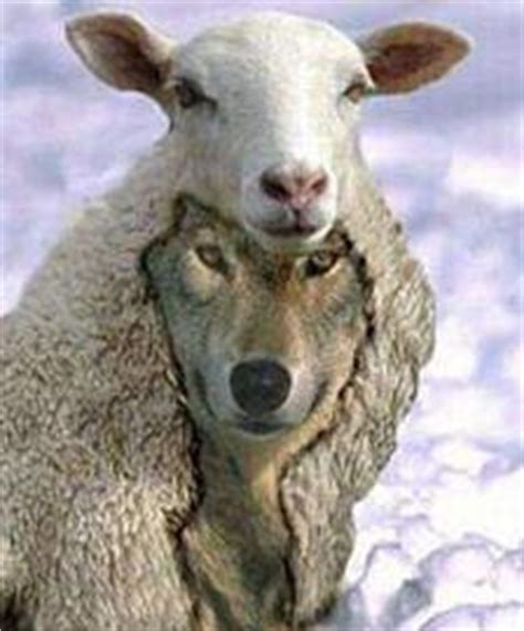 he was a wolf in sheep s clothing 2 volume 2 books portion inheritance damnable heresies of the word