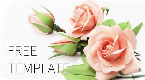 easy to make best paper rose with free template and tutorial