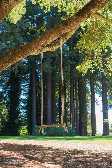 tree swing san francisco mountain terrace woodside wedding venue san francisco