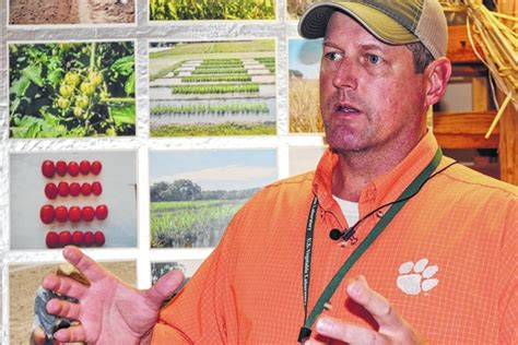 watermelons nooses and razors stories from the jim museum books newberry observer clemson research on watermelons and