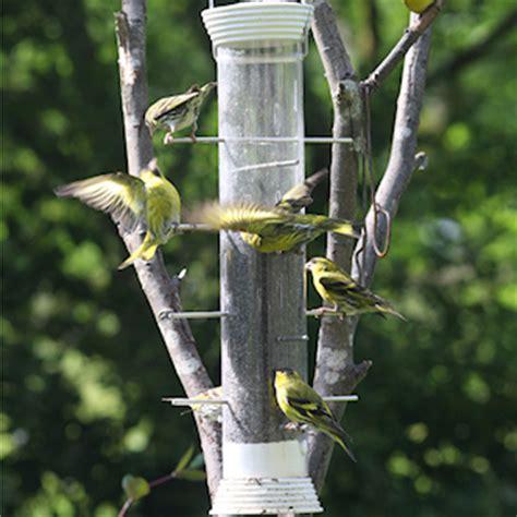 heavy duty niger feeder green the birds bistro