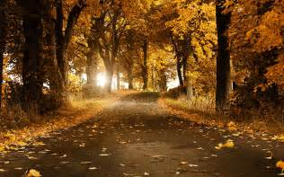 God Of Brilliant Lights 25 Stunning Fall Wallpapers