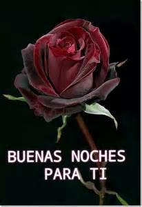imagenes de rosas rojas de buenas noches 17 best images about buenas noches on pinterest te amo