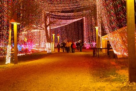 Lights Of Tejas by Cs Salem S Lot And Lights On