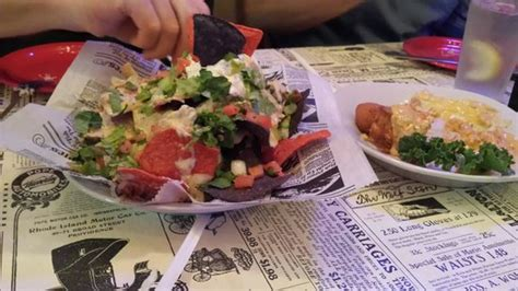 palmetto oyster house seafood nachos alligator cheesecake picture of