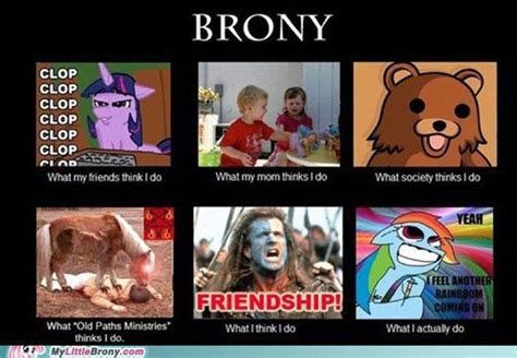 my little brony meme my little pony general ffxiah com
