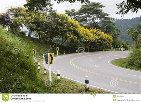 curved road with trees on both sides stock photo colourbox curved road with trees royalty free stock photo cartoondealer 47221455