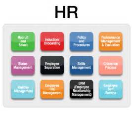 hr processes take up 50 of hr staff time