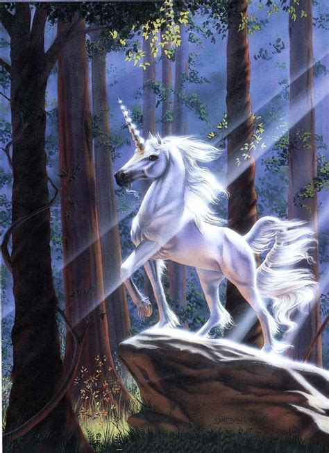 imagenes de hadas unicornios y pegasos fairies and elves unicornios clasificaci 243 n e historia