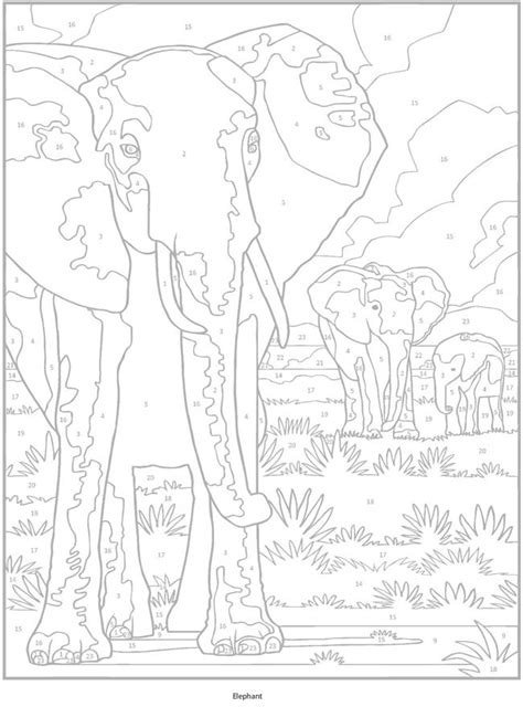 color therapy an anti stress coloring book philippines 10 images about animals to color on coloring