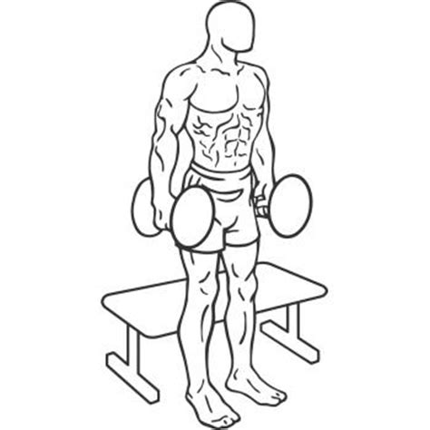 dumbbell bench squat squat to bench with dumbbells gymwolf