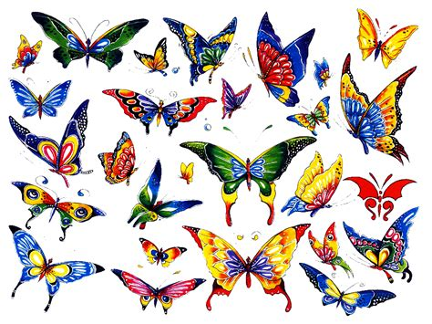 colorful butterfly tattoo designs colorful butterfly designs tattooshunt