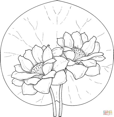 coloring pages monet s water lilies two water lilies coloring page free printable coloring pages