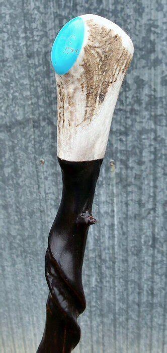 naturally twisted walking stick elk antler top handle