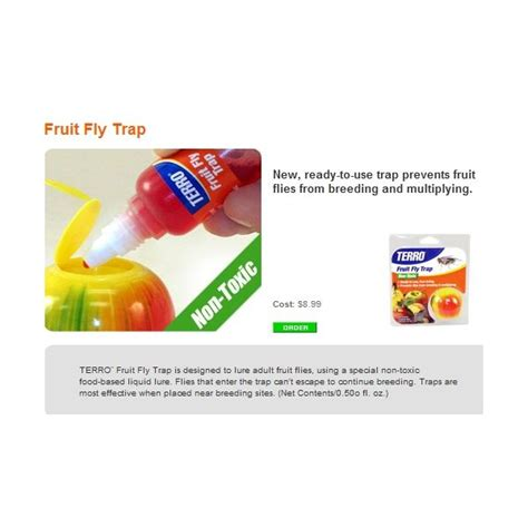 fruit fly spray how to kill fruit flies stop infestation with non toxic