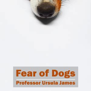 fear of dogs fear of dogs mp3 anxiety uk