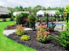 most popular shrubs for landscaping ideas