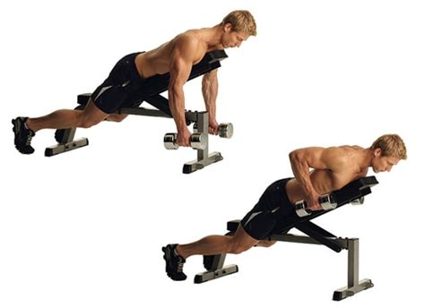 dumbbell bench row lying dumbbell row fitfor you com