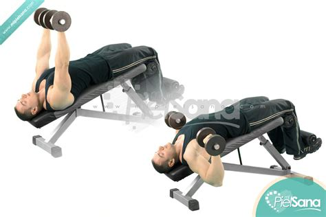decline bench press with dumbbells decline dumbbell bench press