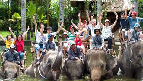 bali elephant ride tour bakas elephant ride tour package
