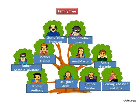 fotos de el arbol familiar mejor conjunto de my family tree crea tu 225 rbol geneal 243 gico