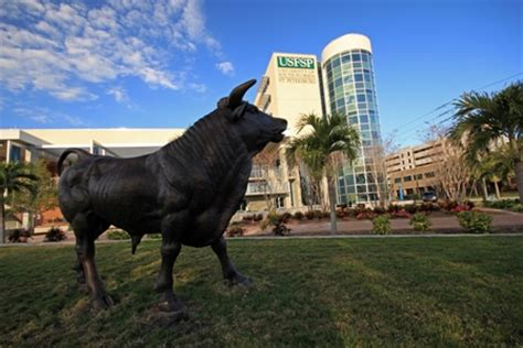Usfsp Mba Admissions by Usfsp Newsletter College Of Business Insider Issue 3