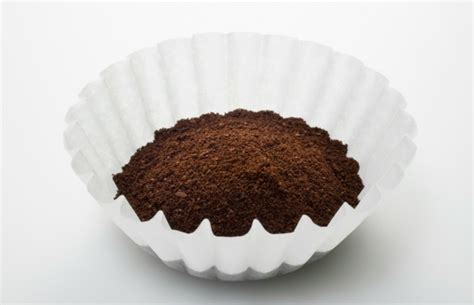 Coffee Filter Uses | new uses for coffee filters surprising things to do with
