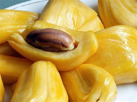 imagenes de jackfruit image gallery jackfruit inside