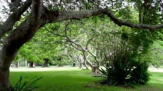 images of gardens photo gallery markden gardens showcase