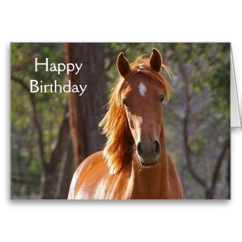 Birthday Cards With Horses On Them Beautiful Chestnut Horse Photo Birthday Card Photos
