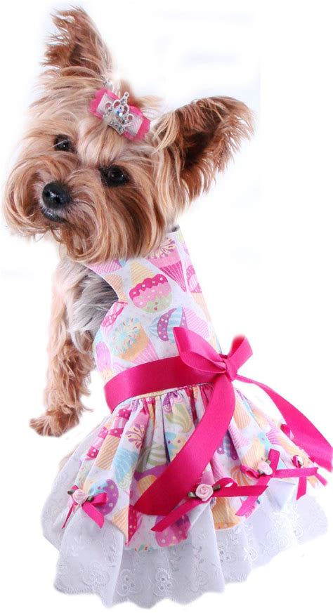 fancy dogs 25 best ideas about small clothes on chihuahua clothes sweaters