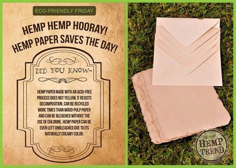 How To Make Hemp Paper - 17 best images about hemp paper on cover