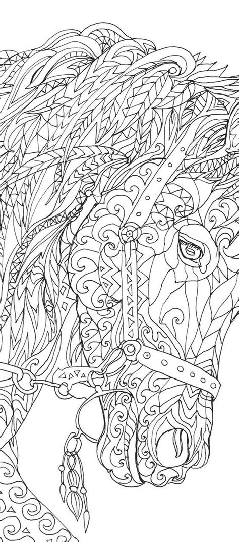 coloring pages for adults hd les 25 meilleures id 233 es de la cat 233 gorie coloriage cheval