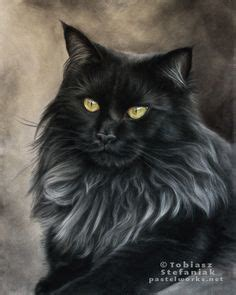 Diskon Maries Orange Cat Acrylic maine coon cats others on maine coon maine